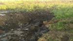 Rekultywacja zalewu wBroniszewicach